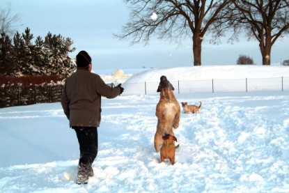 abby winters bi paar sucht bi paar
